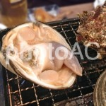 ホンビノス貝という超大きい貝!安くて美味しいおすすめ食材です!